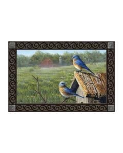 Summer Bluebirds MatMate