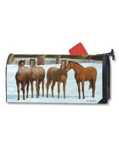 Winter Horse OS MailWrap