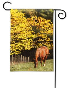 CLR Out to Pasture Garden Flag