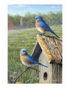 Summer Bluebirds Garden Flag