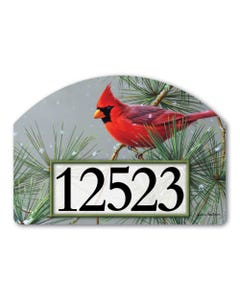 Winter Red Bird Yard DeSign