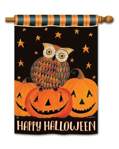 Owloween Fun DS Standard Flag