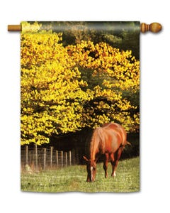 CLR Out to Pasture Standard Flag