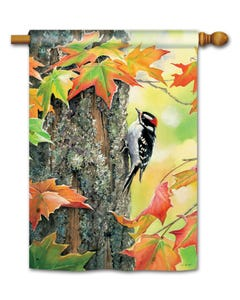 CLR Woodpecker Standard Flag