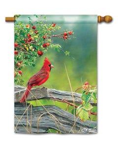 CLR Cardinal Lookout Standard Flag