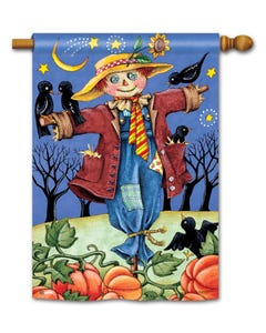 CLR Moonlight Scarecrow Standard Flag
