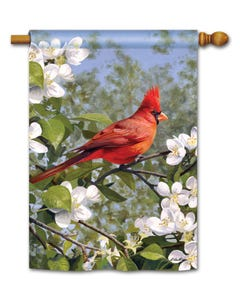 Cardinal in Blossoms Standard Flag