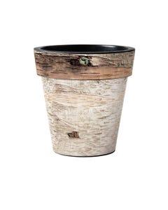 "Birch  15"" Art Planter"