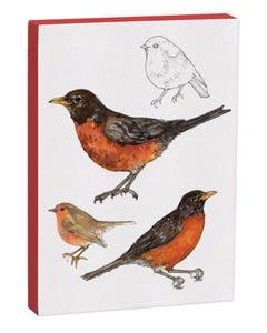 American Robin 5x7 Canvas