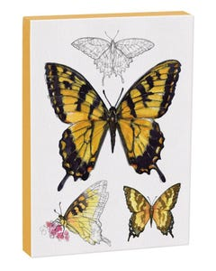 Tiger Swallowtail Butterfly 5x7 Canvas