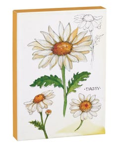 Daisy 5x7 Canvas
